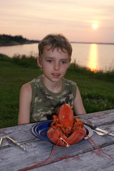 Caraquet homard