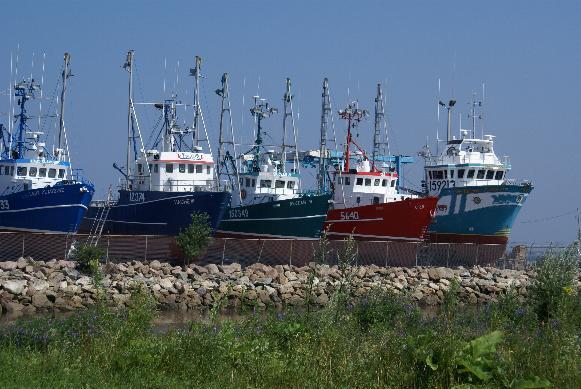 Shippagan bateaux