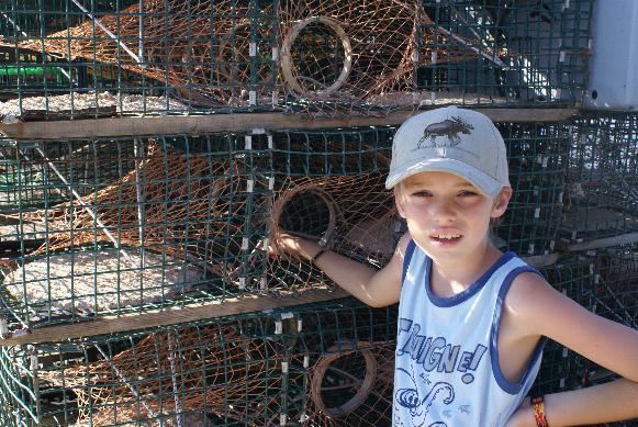 acadie trappe homard 2